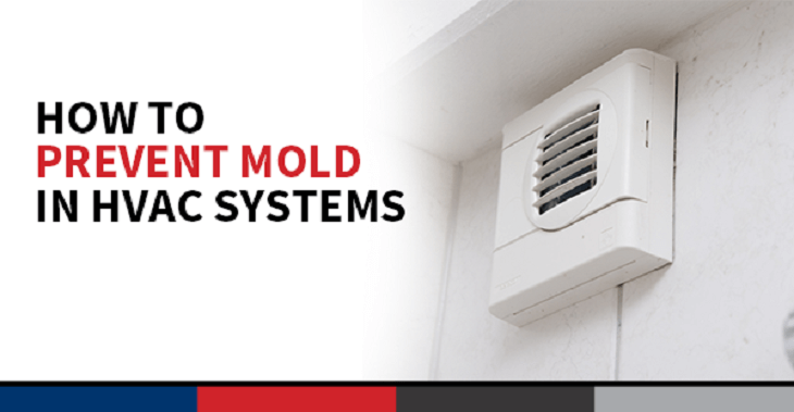 3 Ways to Prevent Mold Growth